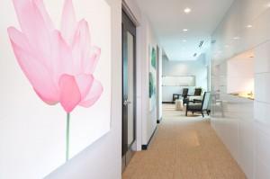 Lotus Dental Hallway